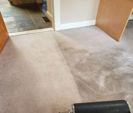 Urine Saturated Dirty Carpet, Traffic Soiling