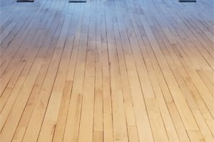 Sanded Out Hardwood Floor Scratch