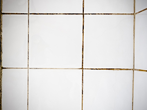 Dirty Grout Bathroom Tiles